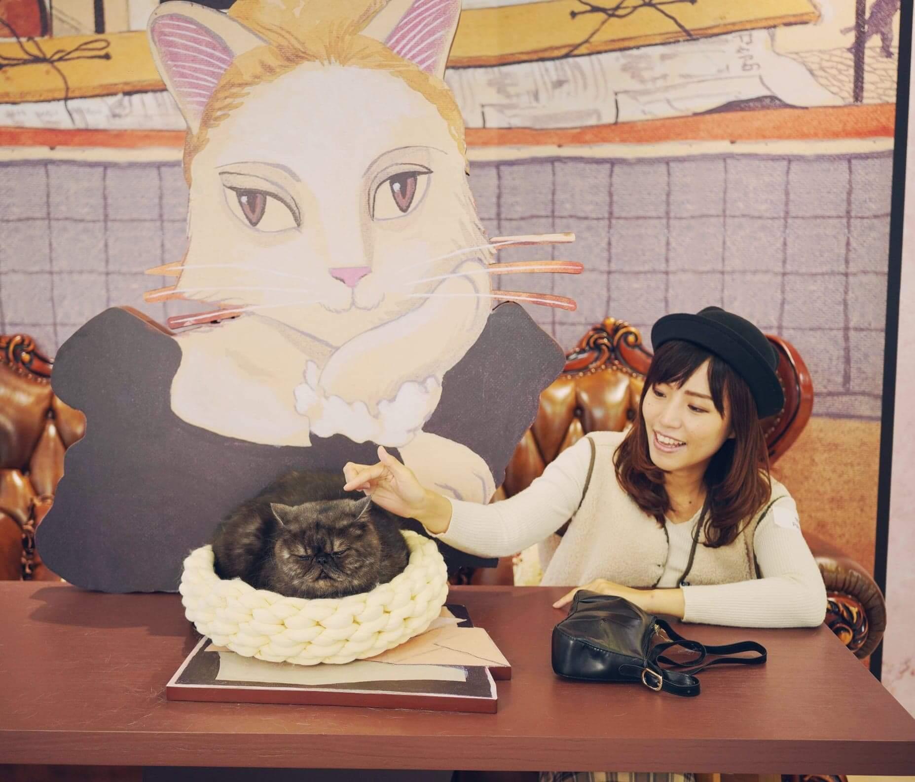北角匯一期必去《咖啡館的貓 》布景,慵懶高貴的名模貓咪正等著大家與她 來一杯「藝」咖啡。