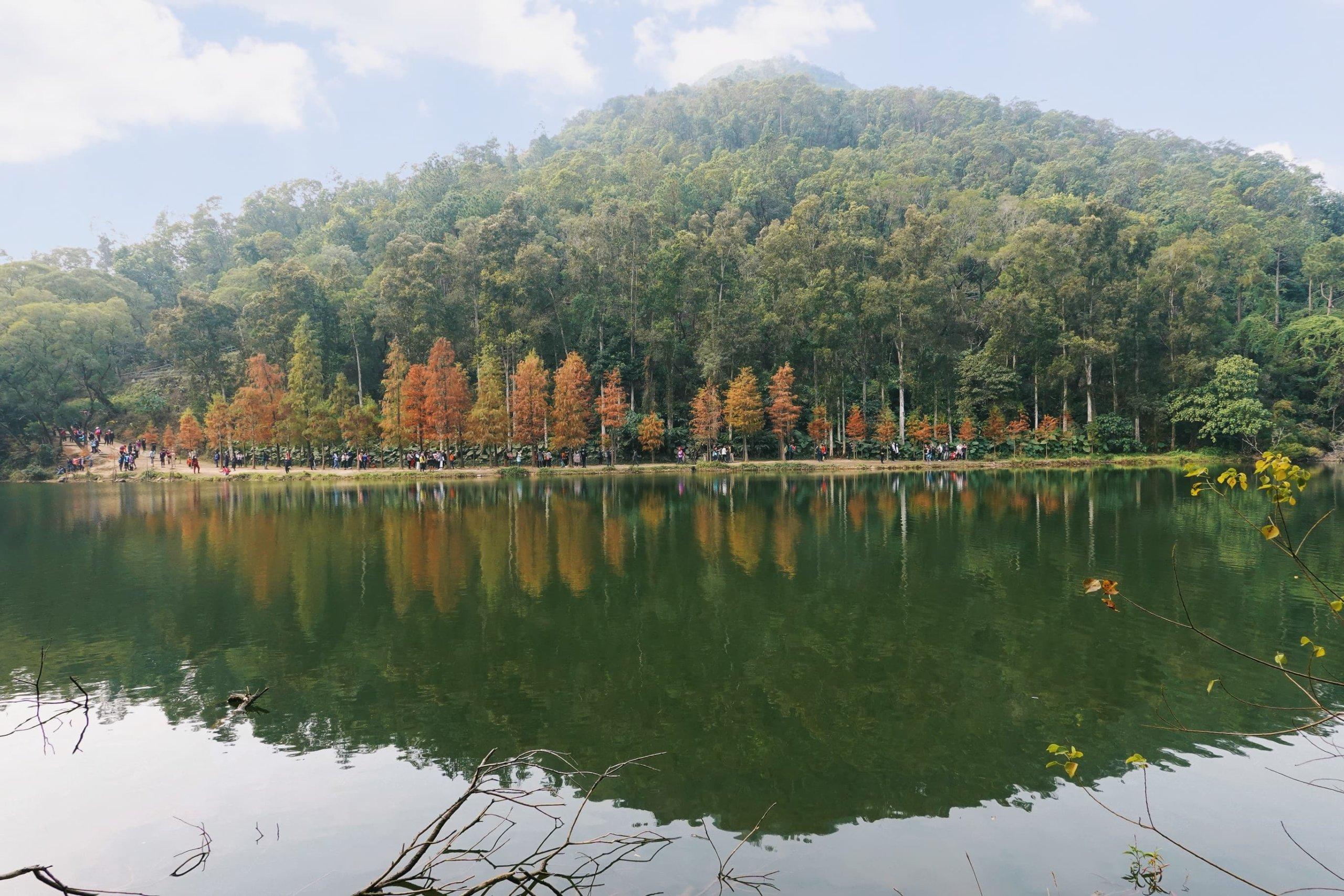 在水塘的環迴步道,沿途風景,令人似置身國外。