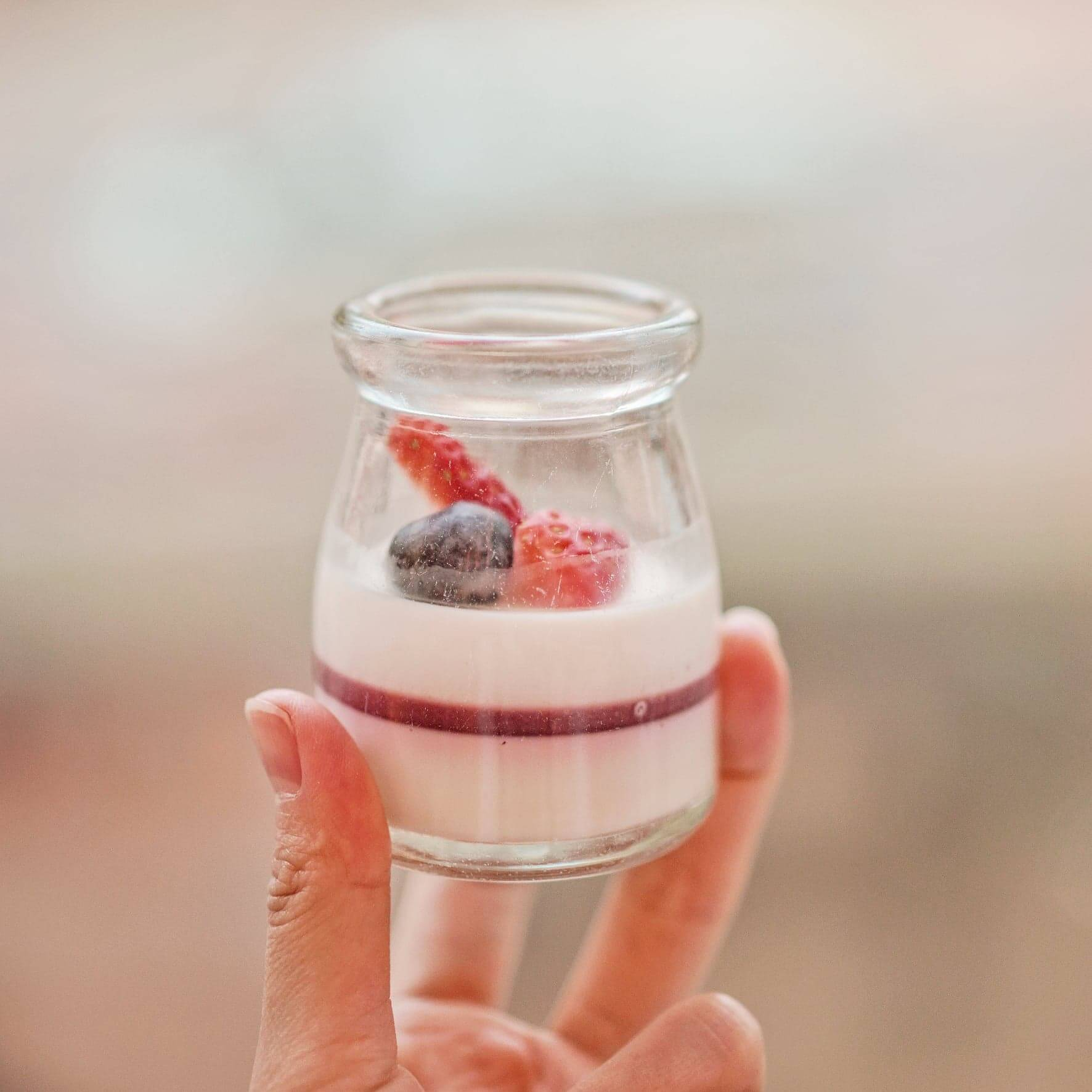 紅莓牛奶布甸