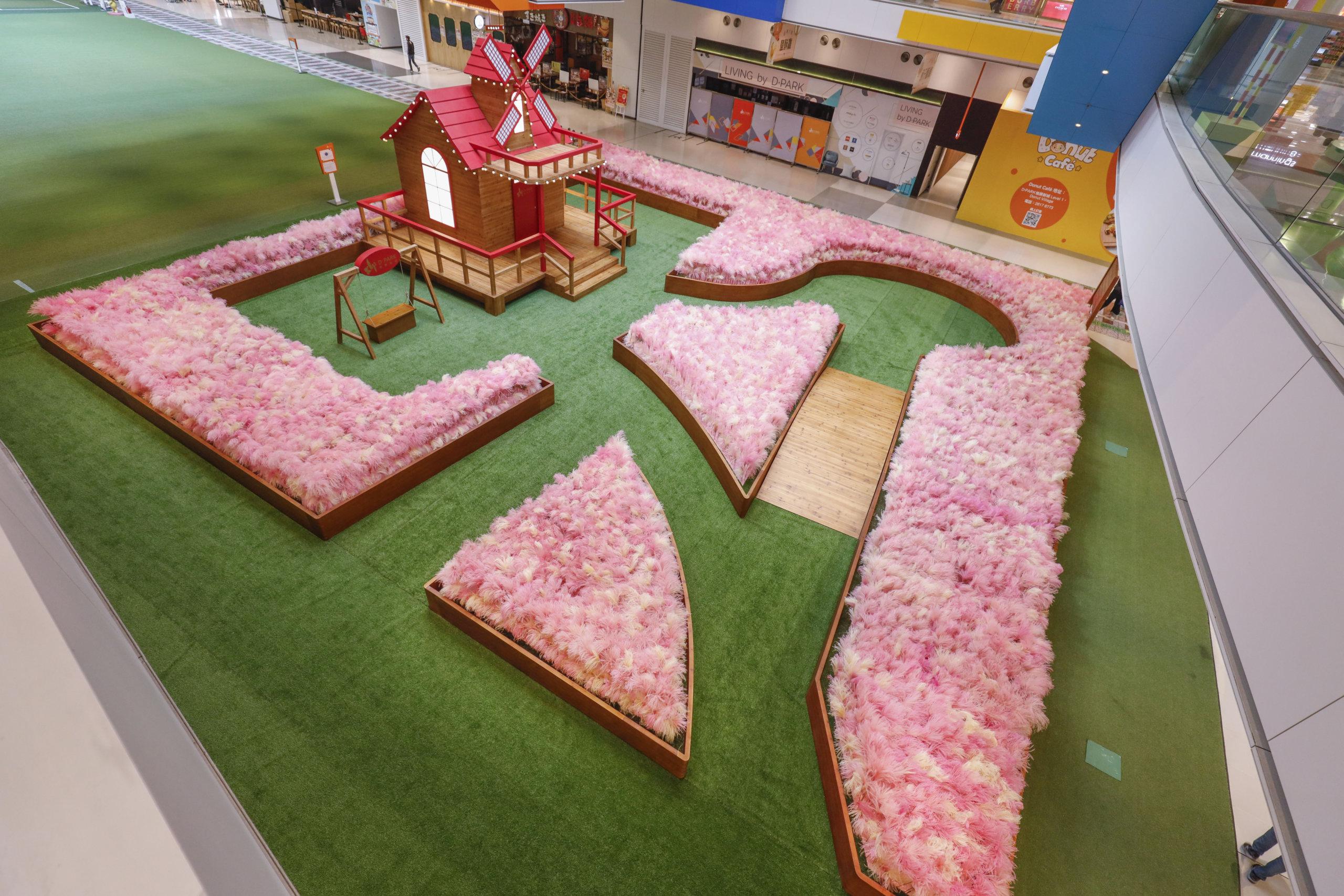 佔地逾3,500呎夢幻絕倫「粉紅芒草園」,洋溢浪漫氣息!