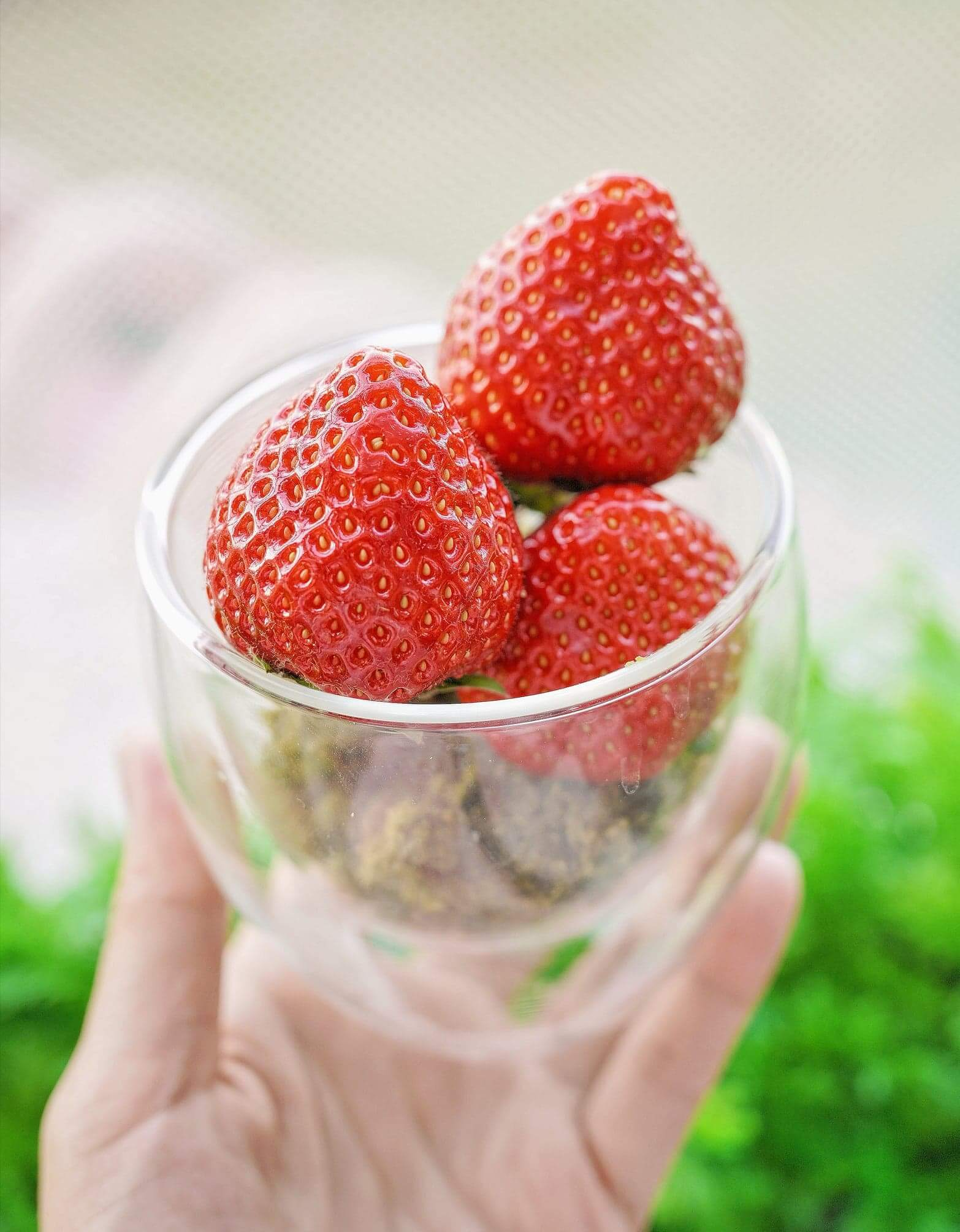 新鮮博多甜王草莓杯(另加HK$50)