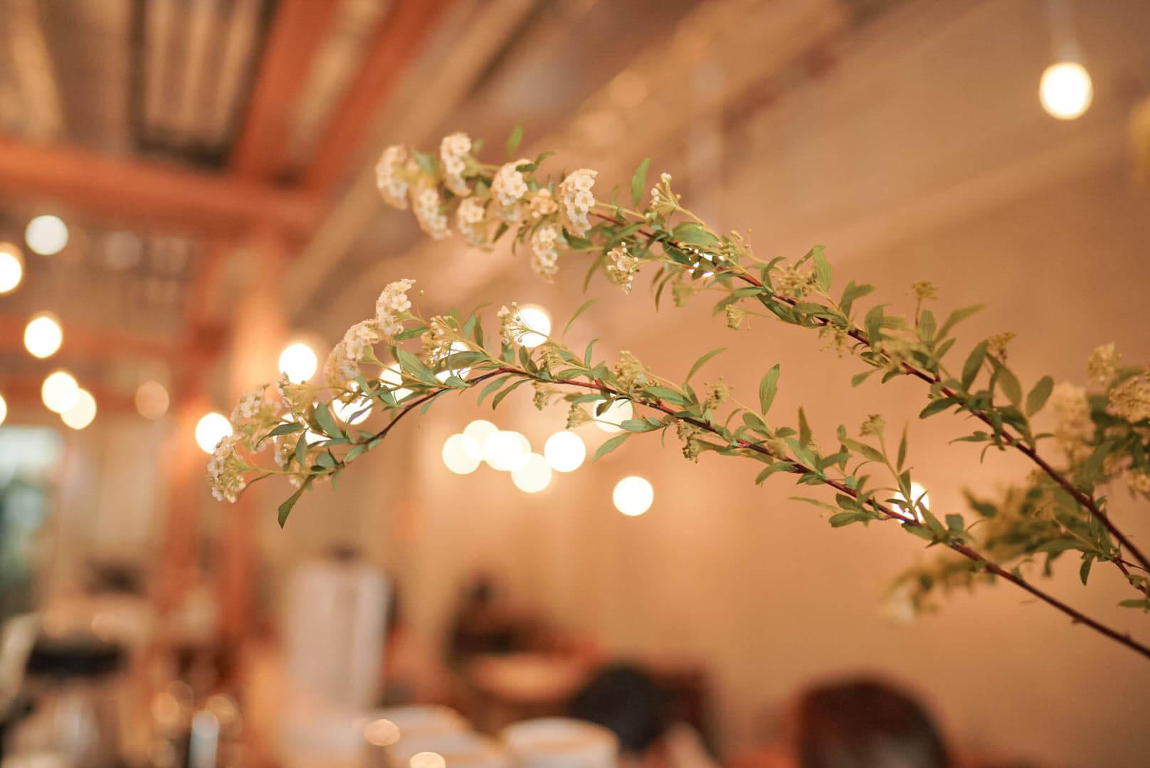 少量植物,為室內添加綠意。