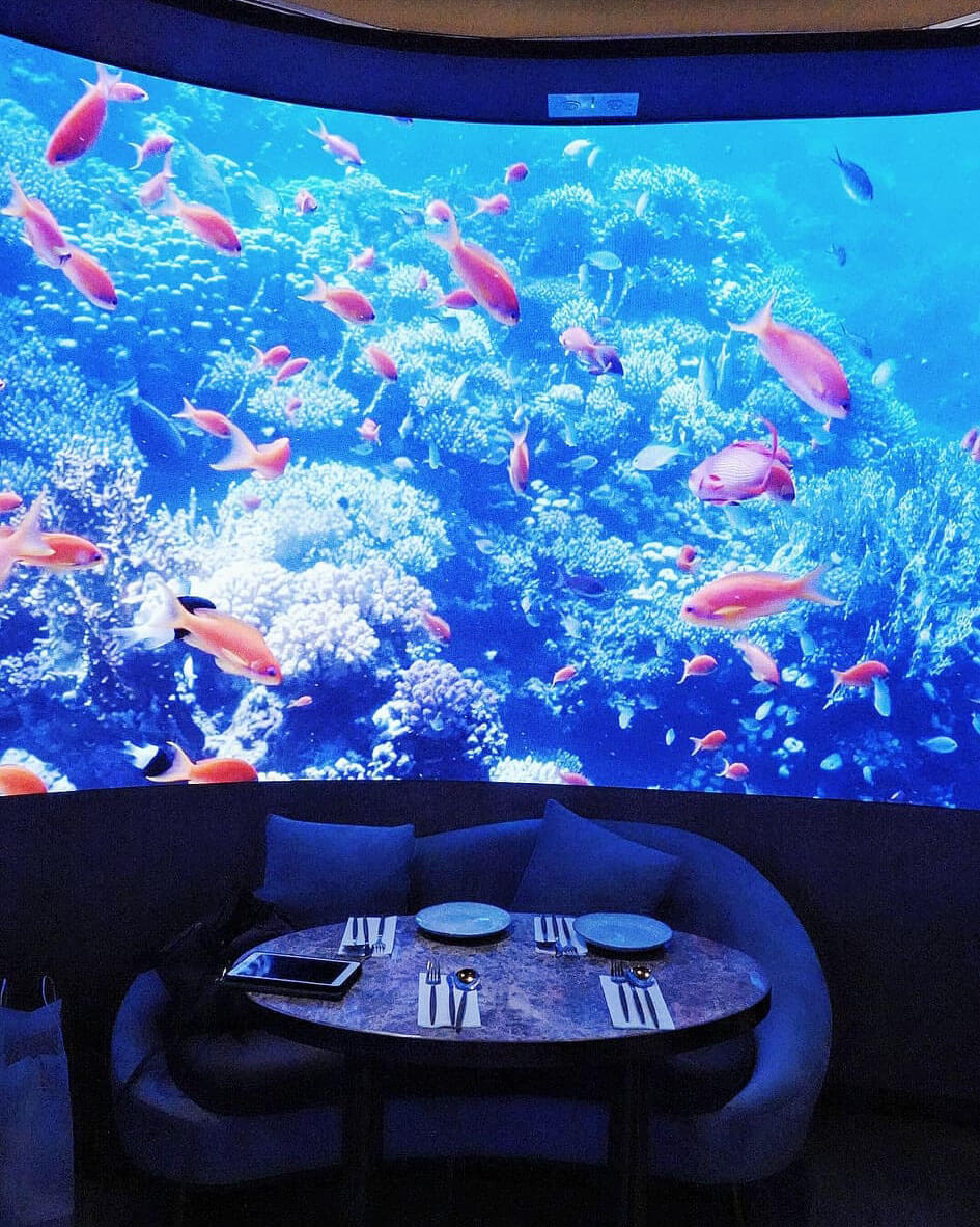 魚群在屏幕中穿梭,猶如置身水族館!