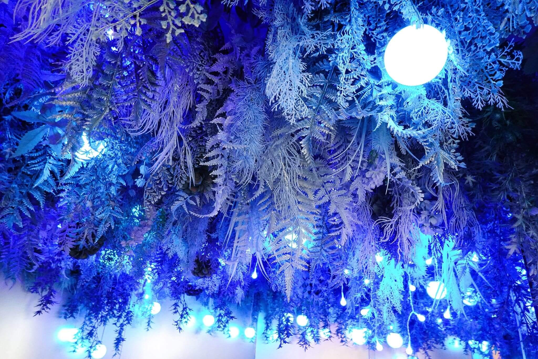 店子設有一個位置,天花掛滿藍色植物,加上大小燈飾,是必去打卡靚位!