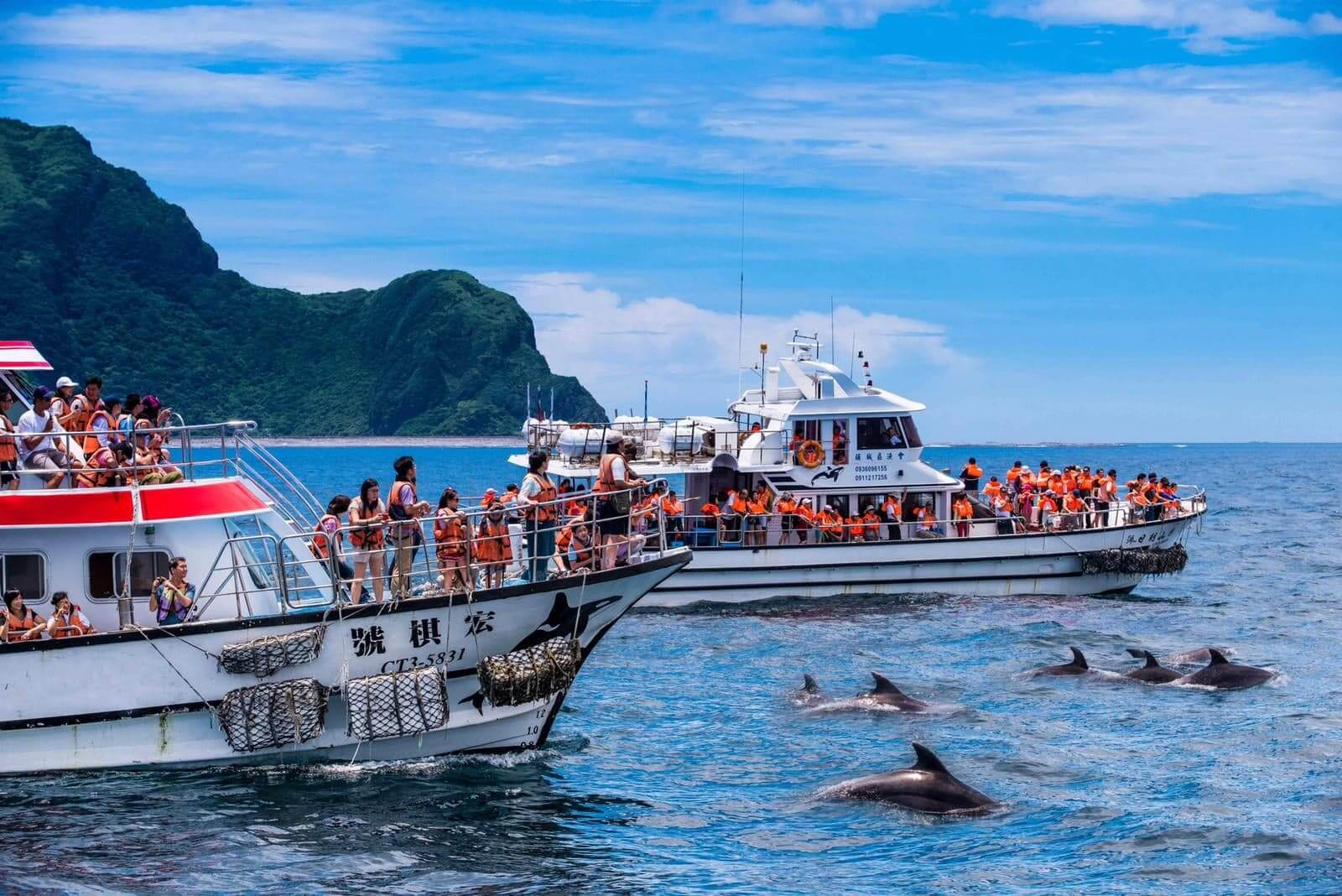 「宜蘭賞鯨二日遊」登船同俏皮的鯨豚前往龜山島。