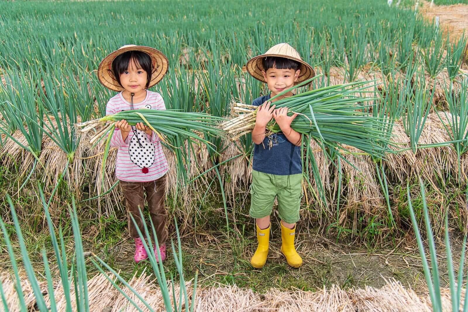 「綠色經濟」遊程中提供了多種農村體驗。